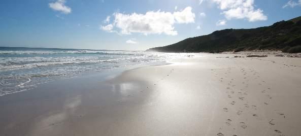 Kangaroo Island WWOOFing