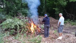 August 2014, First Clearing Of The Bott Lott