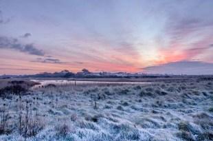 Pre sunrise frost at Titchfield Haven Nature Reserve