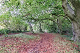 meon-valley_20141012_32627