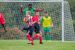 Football U11_20170930_4380