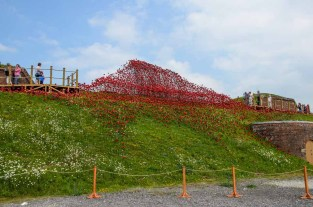 Poppies Wave at Fort Nelson. By Paul Cummins, artist and Tom Piper, designer