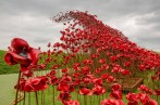 Poppies_Wave at Fort Nelson, Fareham