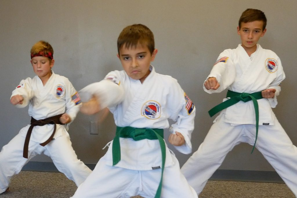 Overland Park Karate  Martial Arts Classes in Overland Park, KS