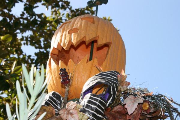 halloween-time-at-disneyland-resort-hmh-jackolantern