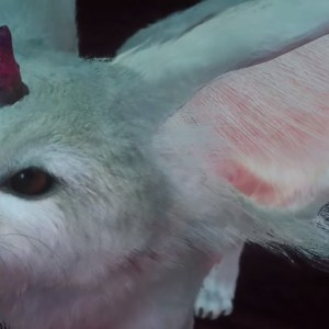 FFXV Carbuncle reference images and screenshots