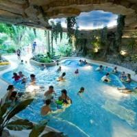 Blackstone in need to refinance €400m for Center Parcs villages