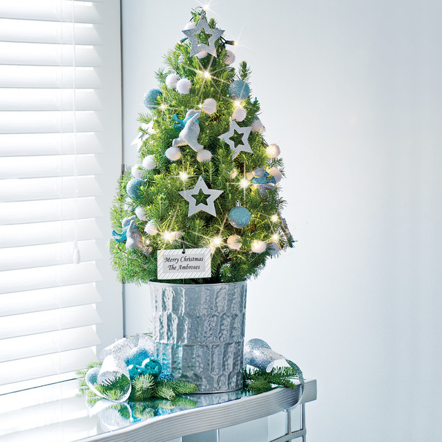 Awasome Tabletop Christmas Trees \u2014 OZ Visuals Design  Ideas to