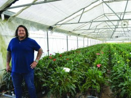 Gerald Goldberg, general manager of Skyline Flowers, grows gerberas and other flowers  in a greenhouse in Nipomo.