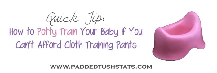 Quick Tip - How To Potty Train Your Baby If You Can't Afford Training Pants. Here are Tara's Top 4 suggestions for ways to potty train your baby that DON'T involve purchasing special cloth training pants!
