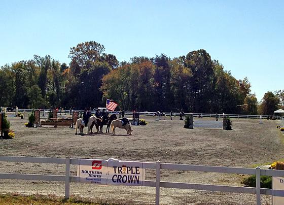Chincoteague Pony Drill Team at the Fair Hill International