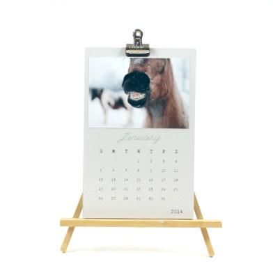 Painting Pony 2014 Calendar
