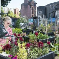 New £20,000 scheme to bring gap sites back into use