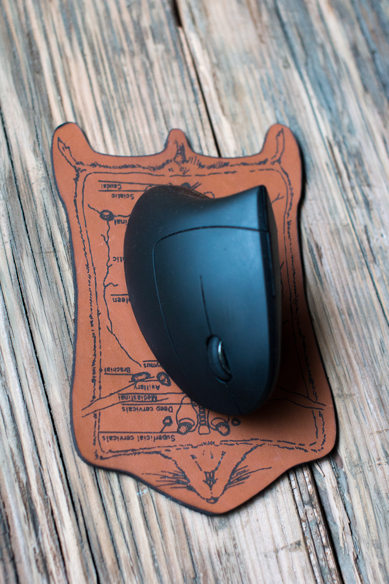 Dissected Leather Mousepad