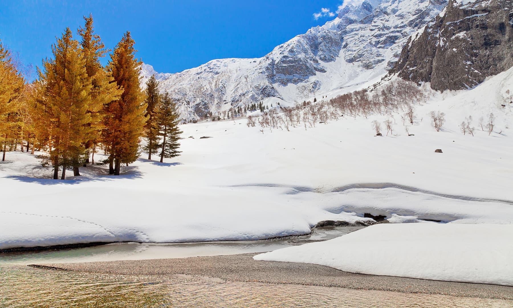 Naltar in winter