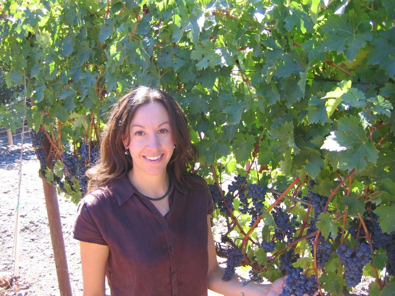 winemaker resume samples