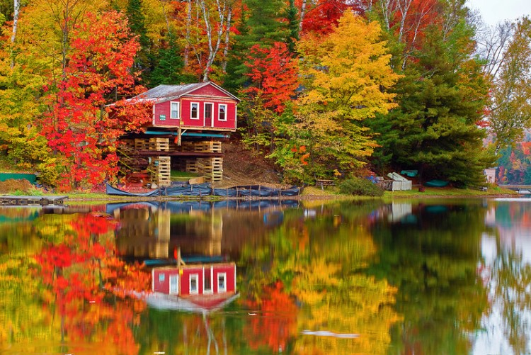 New England Fall Foliage Wallpaper Stowe Vermont Foliage Pall Spera Company Realtors