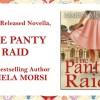 Panty Raid feat blog image