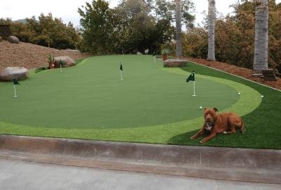 awesome-backyard-putting-green