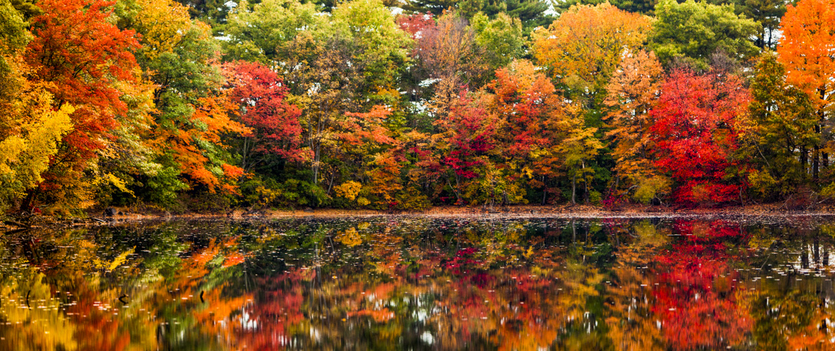 New Hampshire Fall Foliage Wallpaper Scott Papek Photography Omaha Nebraska Fine Art