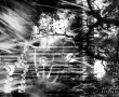 Papel de Parede Abstrato