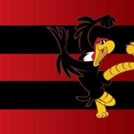 Papel de parede 'Flamengo Mascote #2'