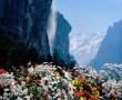Papel de Parede Flores e Cachoeira