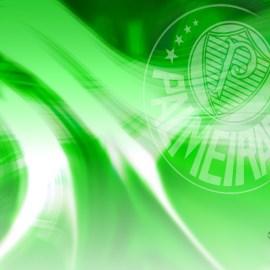 Papel de parede 'Palmeiras #7'