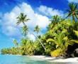 Papel de Parede Praia Paradisíaca