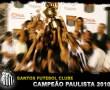 Papel de Parede Santos – Campeão Paulista 2010