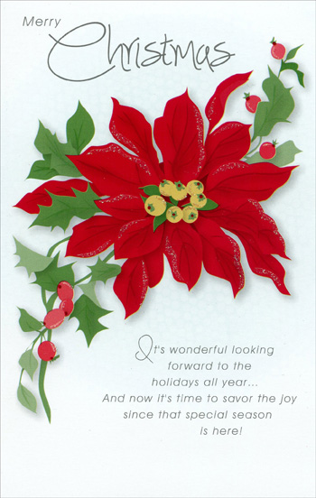 Poinsettia Christmas Card - Greeting Card by Freedom Greetings