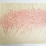 """Organic Taxonomy"", pressure print on handmade flax paper, ed. 15, 18"" x 24"""
