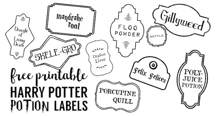 Harry Potter Potion Labels Printable - Paper Trail Design