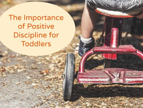 positive discipline for toddlers