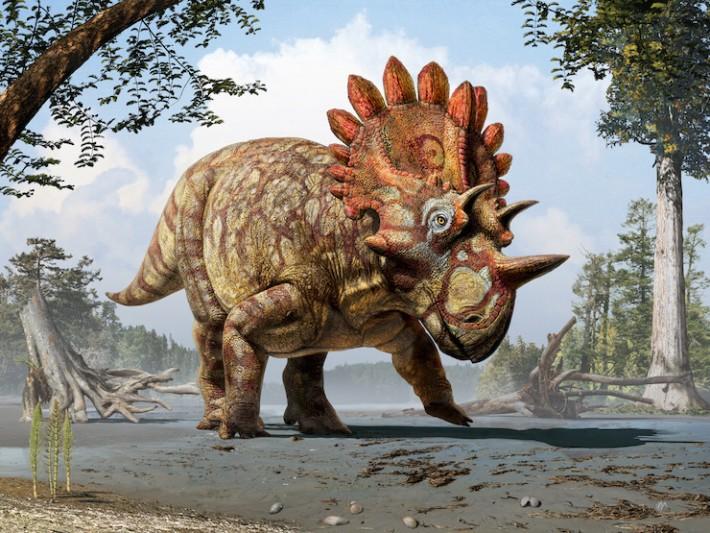 Regaliceratops-Hellboy