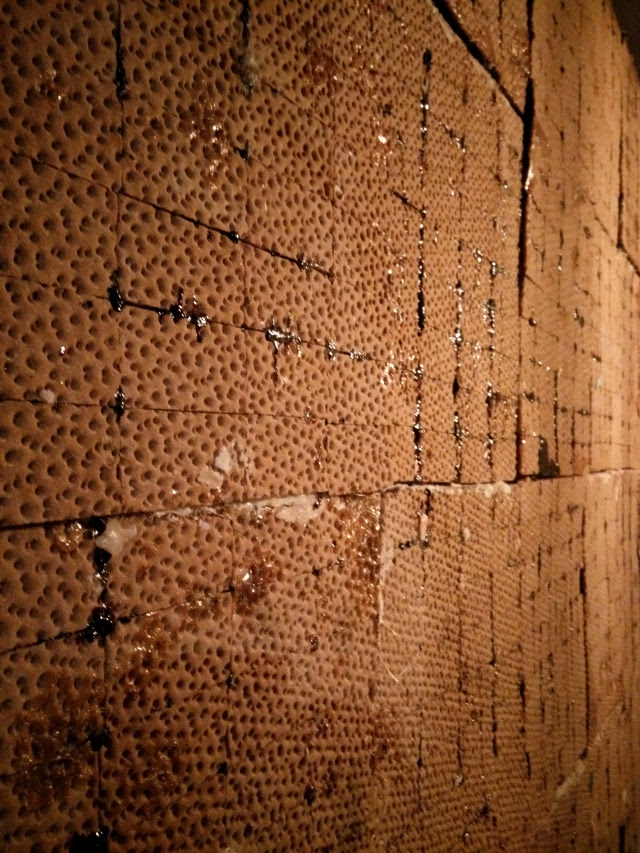Walls made from dried WASA crackers