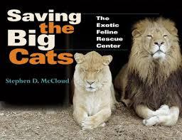 saving-the-big-cats