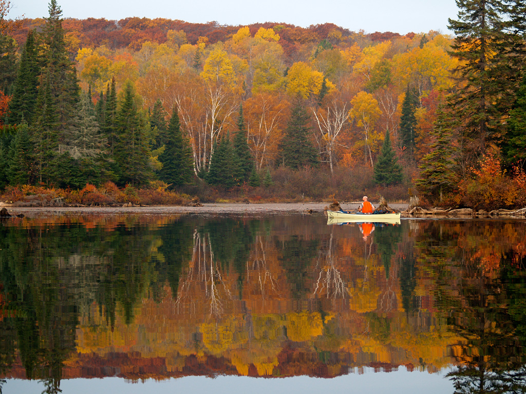 French Fall Wallpaper Algonquin Fall Colours Inspiration In Pictures