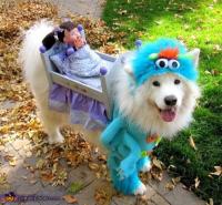Best Halloween costume ideas kids toddlers babies infants