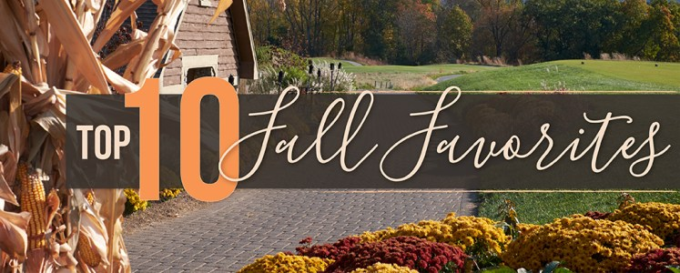 Top 10 Items for Fall Events - Party Rental Ltd.
