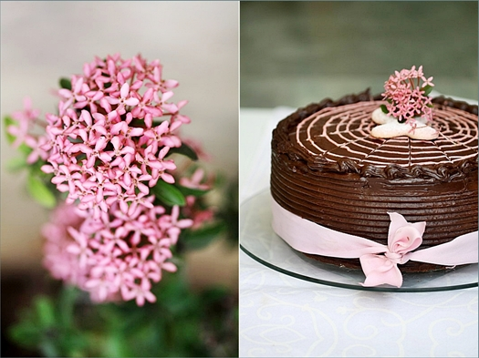 Chocolate & Strawberry Cream Cake