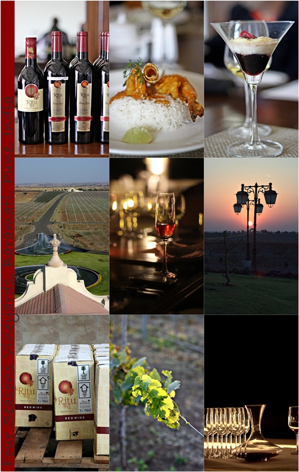 Four Seasons Vineyards, Baramati, Pune, India