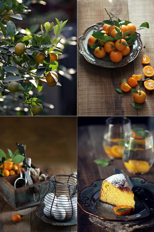 Orange Almond Cake {gluten free} 5