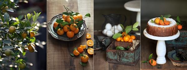 Orange Almond Cake {gluten free}