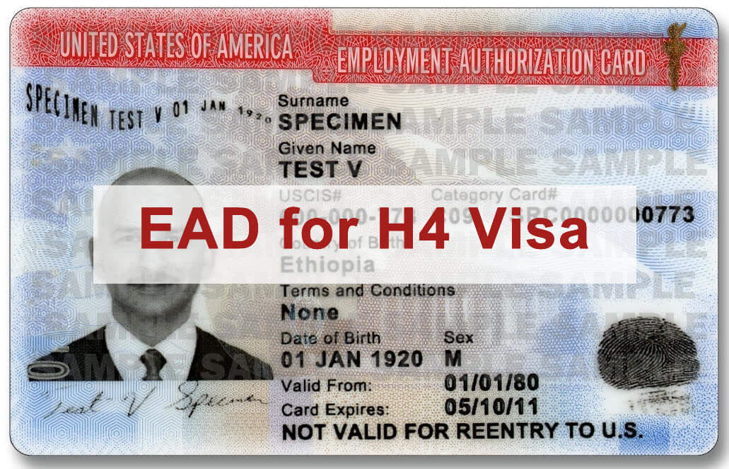 EAD for H4 Applicants Revised Form I-765 Now Available - sample employment authorization form