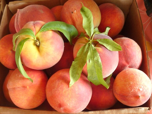 Peach season is short and sweet - possibly stretching to six weeks. Photo: Patsy Bell Hobson