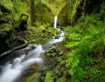 High Res Multnomah Falls Wallpaper Pacific Northwest Usa Travels Florida Landscape
