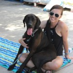 Sarge - ADOPTED!