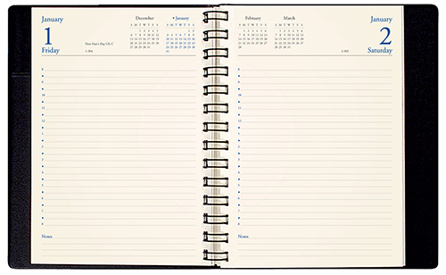 DB-21 2019 Skivertex Daily Appointment Planner 6 x 8 inches