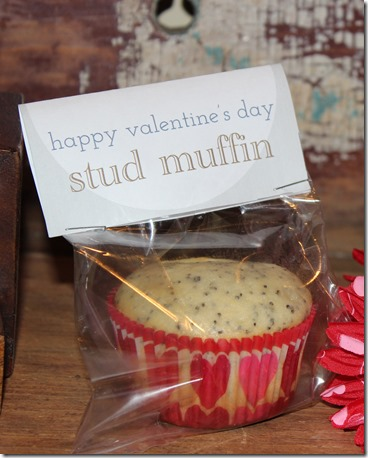 Valentine's Day Stud Muffin